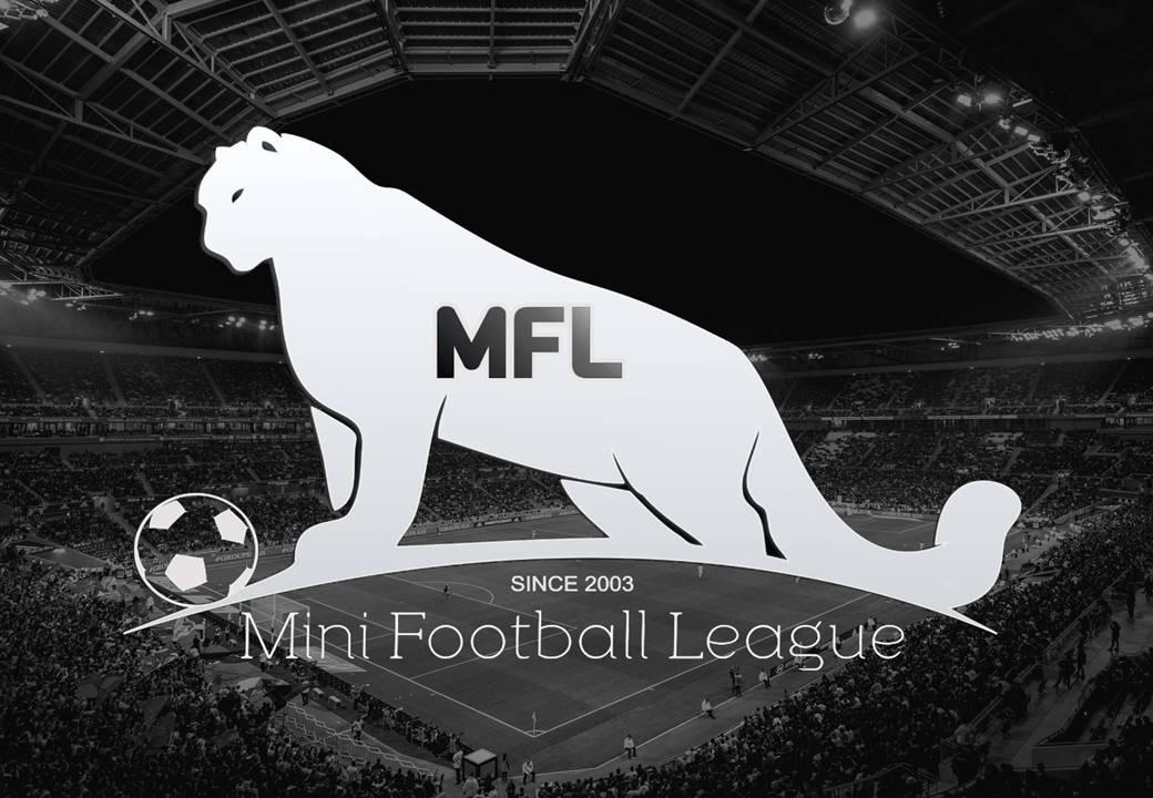 MFL-презентация-1.jpg